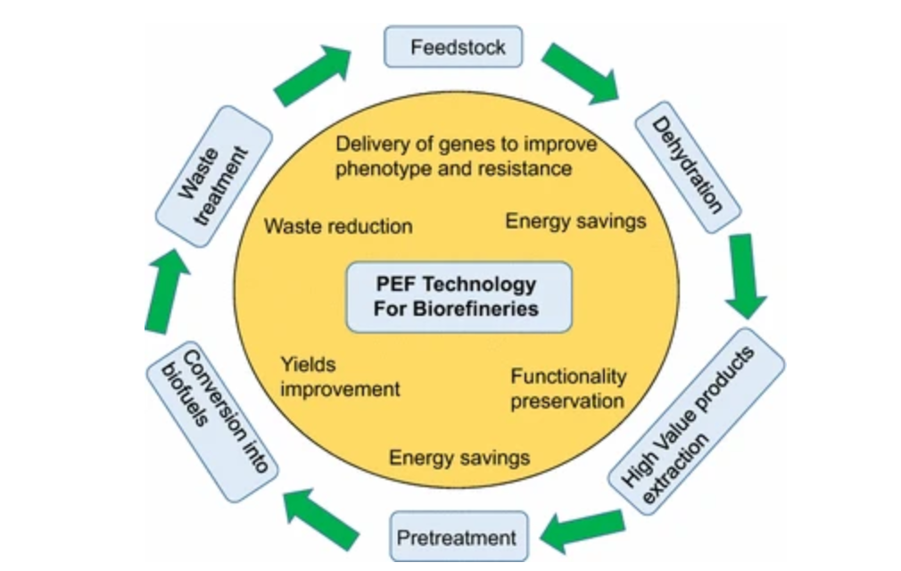 PEF-technology-for-Bio-refineries